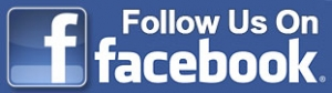 FB-follow-button